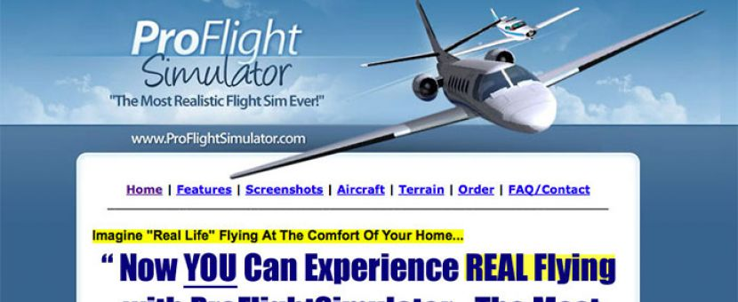 Pro Flight Simulator: What You're Really Getting
