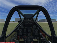 Mustang at Whenuapai