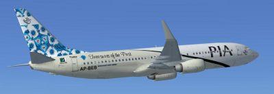 Pakistan International Airlines Boeing 737-800 ''Thatta Treasures of the Past'' in flight.