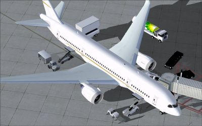 Boeing 787-8 BBJ at boarding gate.