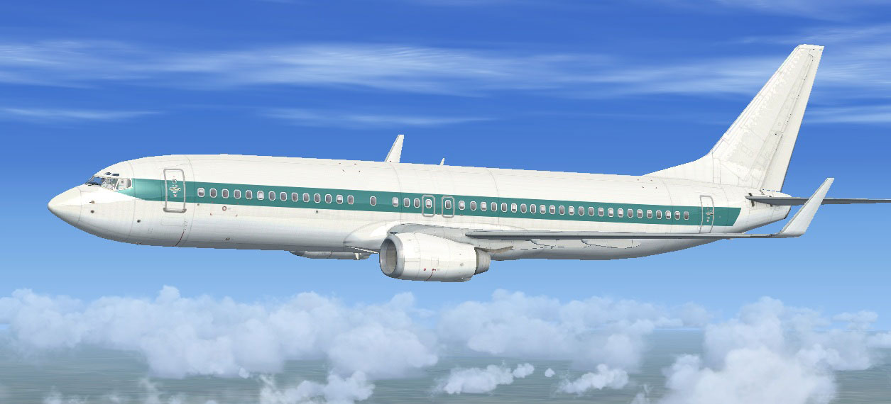 Default Boeing 737-800 Repaint 11-Pack for FSX