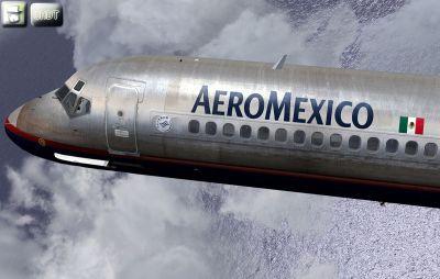 AeroMexico metal paint