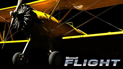 New Microsoft Flight media from the FSinsider website
