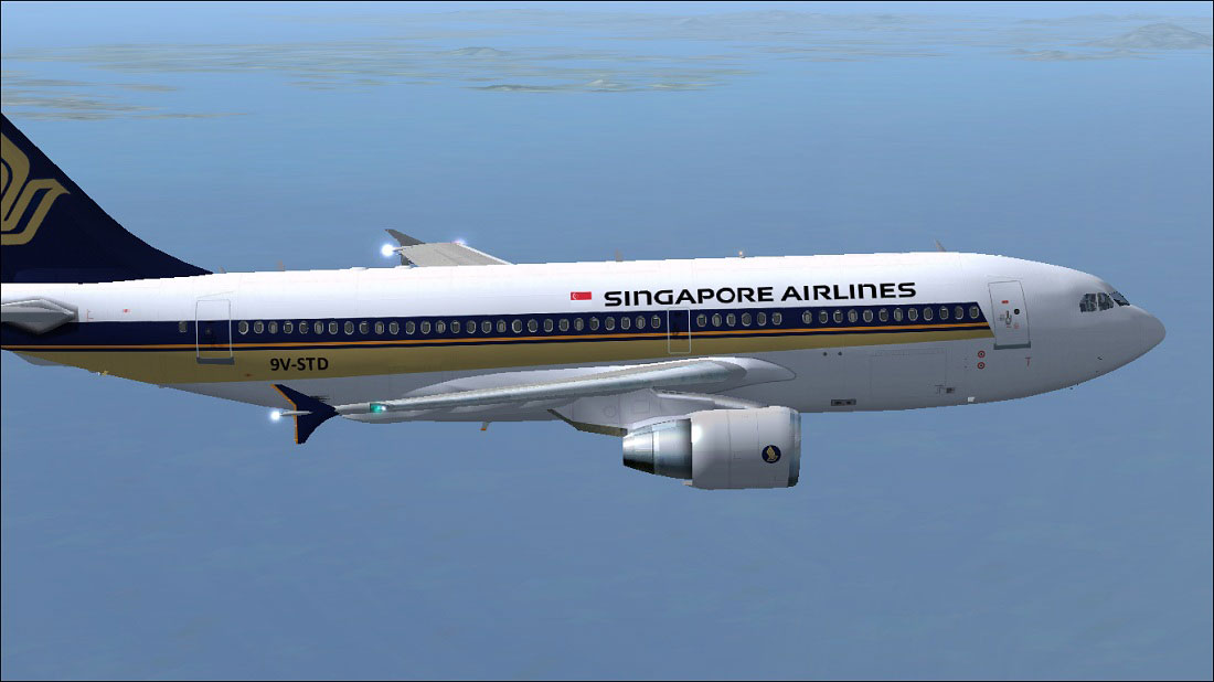 problems faced by singapore airlines Passengers received a scare when a singapore airlines jet dropped 13,000ft after both of its engines failed in mid-air on a recent flight the carrier has launched an investigation to determine .