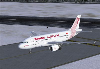 Tunis Air Airbus A319-114 on runway.