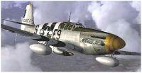 Warbirdsim P-51 Mustang