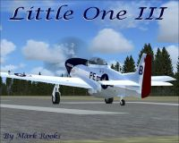 Screenshot of P-51 Little One III on runway.