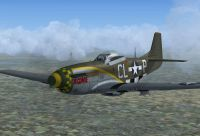 Screenshot of 55th FG P-51D-5 'Da Quake' in flight.