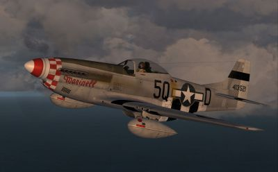 Screenshot of 'Marinell' of the 339th Fighter Group in flight.