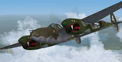 Screenshot of P-38J-10-LO 459th Fighter Squadron in flight.