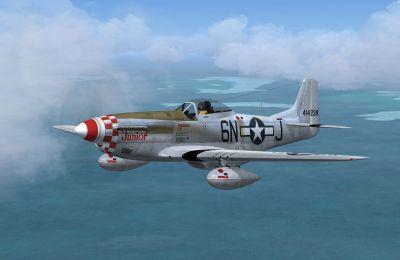 Screenshot of P-51D 'Junior', 339th FG in flight.