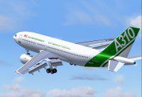 Screenshot of Evergreen Airbus A310 in flight.
