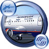 Icon showing Aeroflot Airbus A319-111.