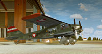 Screenshot of Dornier Do 28 A outside the hangar.