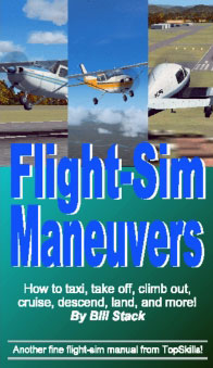 Flight Sim Maneuvers book cover.