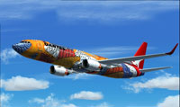 Screenshot of Qantas Boeing 737-800 in flight.