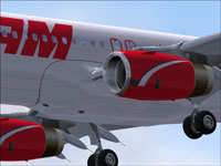 Screenshot of TAM Airbus A320-232 in flight.