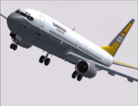Screenshot of TNI-AU Boeing 737-800 in flight.
