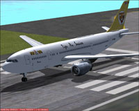 Screenshot of Tiger Air Services Airbus A300 B4 200 on runway.