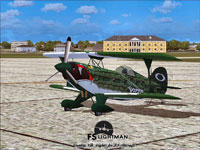 Screenshot of Viper Pitts S2S Aerobatic Aircraft on the ground.