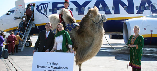 Ryanair aircraft in Morocco with Camel.