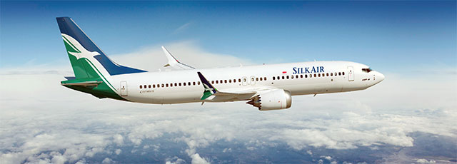 Silkair Boeing 737: Artistic Drawing