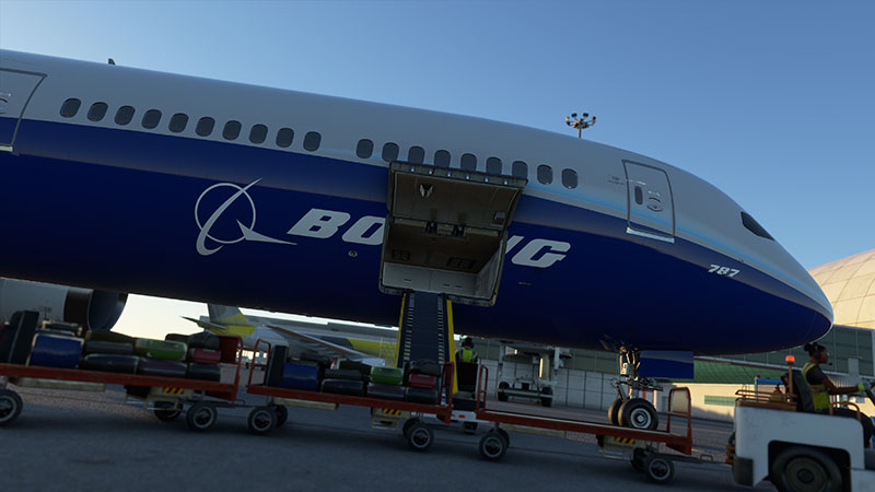 787 cargo being loaded.
