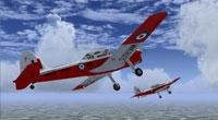 Screenshot of Army Chipmunks WK613 And WZ8829 in flight.