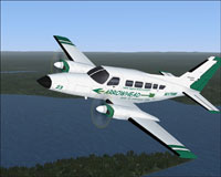 Screenshot of Arrowhead Cessna 402C Utiliner in flight.