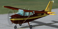 Screenshot of brown and yellow Cessna 172SP on runway.