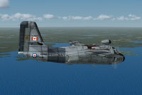 Screenshot of Can Mar Patrol Grumman in flight.