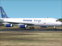 Screenshot of Canarias Cargo Douglas DC-8-62F on runway.