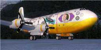Screenshot of Daves Tool Box Douglas C-124 on the ground.