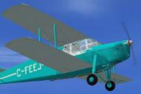 Screenshot of DeHavilland Hornet Moth C-FEEJ in flight.