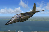 Screenshot of Dornier Alphajet JaboG 41 in flight.