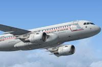 Screenshot of ETEC 65 Airbus A319 in flight.