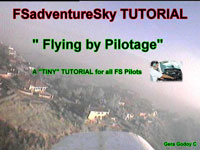 FSadventureSky's cover image for 'Flying by Pilotage'.