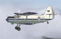 Screenshot of Greywolf Cargo An2T in the air.