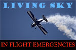Cover image for In Flight Emergencies Demo.