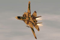 Screenshot of Iran Air Force F-14AM Tomcat in flight.