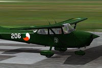 Screenshot of Irish Air Corps Cessna 172 on runway.