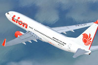 Screenshot of Lion Air Boeing 737-800NG in flight.