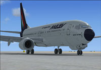 Screenshot of Malev Boeing 737-800 on the ground.