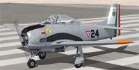 Screenshot of Mexican Air Force T28A EA204 on runway.