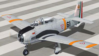 Screenshot of Mexican Air Force T28A EA207 on runway.