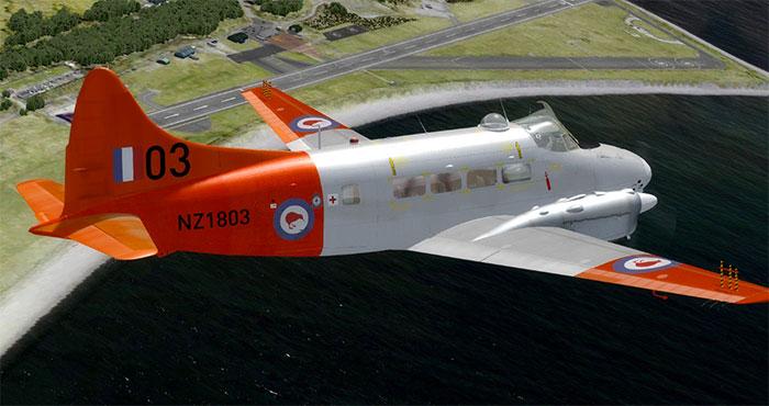 NZ orange Dove in flight.
