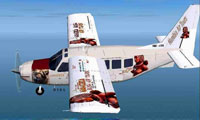 Screenshot of Namibia Bush Airtours Gippsland GA-8 in flight.