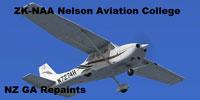 Screenshot of Cessna 172R ZK-NAA in flight.