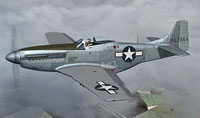 Screenshot of P-51D Mustang in flight.