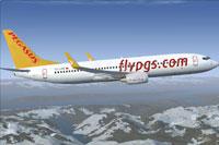 Screenshot of Pegasus Airlines Boeing 737-800 NGX in flight.